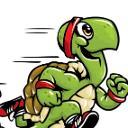Profilbild von Schnelle Schildkröte