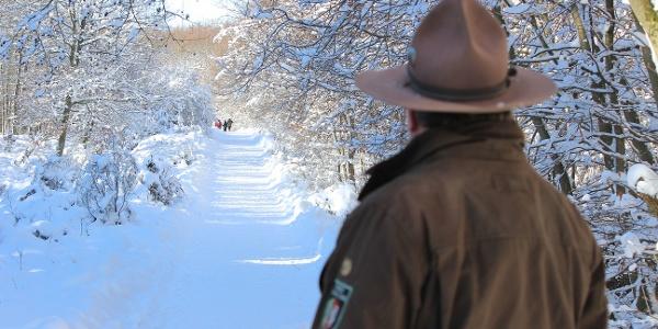 Sie können den Wilden Kermeter auch bei einer Rangertour erkunden