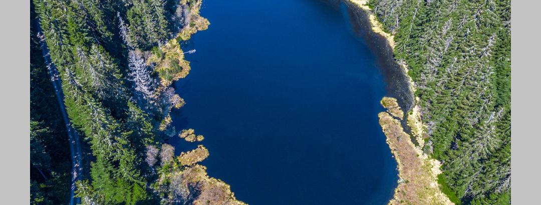 Herrenwieser See von oben