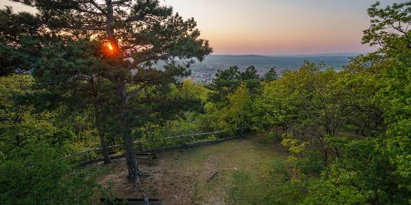 Kilátás a soproni Gloriette-kilátóból