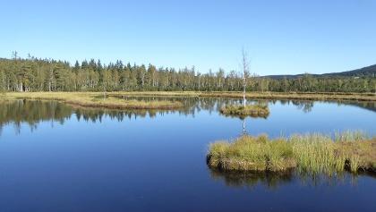 Großer Königsfilz - größter Moorsee Tschechiens