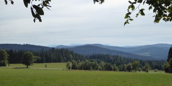 Alpenblick - Hochwiese