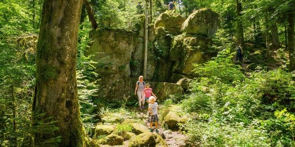 Die GeoTour führt auch an der imposanten Felsenburg vorbei