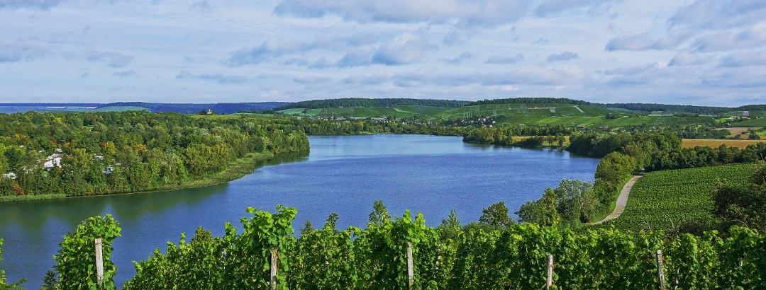 Breitenauer See bei Obersulm | Weinsberger Tal | HeilbronnerLand
