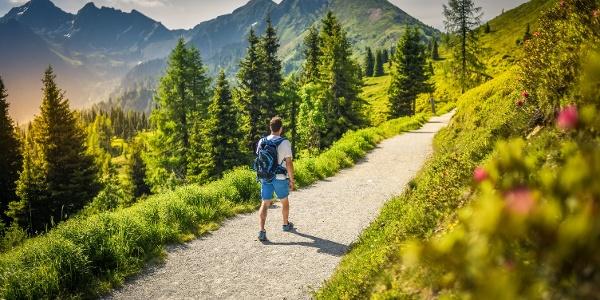 Ein Wanderer am Planai Panorama-Rundweg