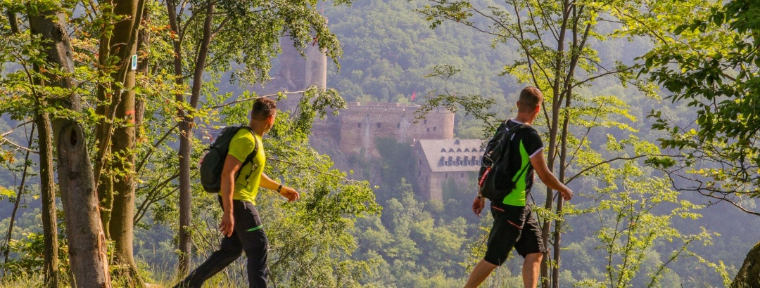 Wandern an der Ehrenburg