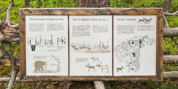 Peurapolku on Tunturi-Lapin luontokeskuksen helppo ja lyhyt lähireitti
