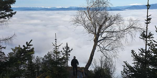 The lookout point near Rochus Kapelle