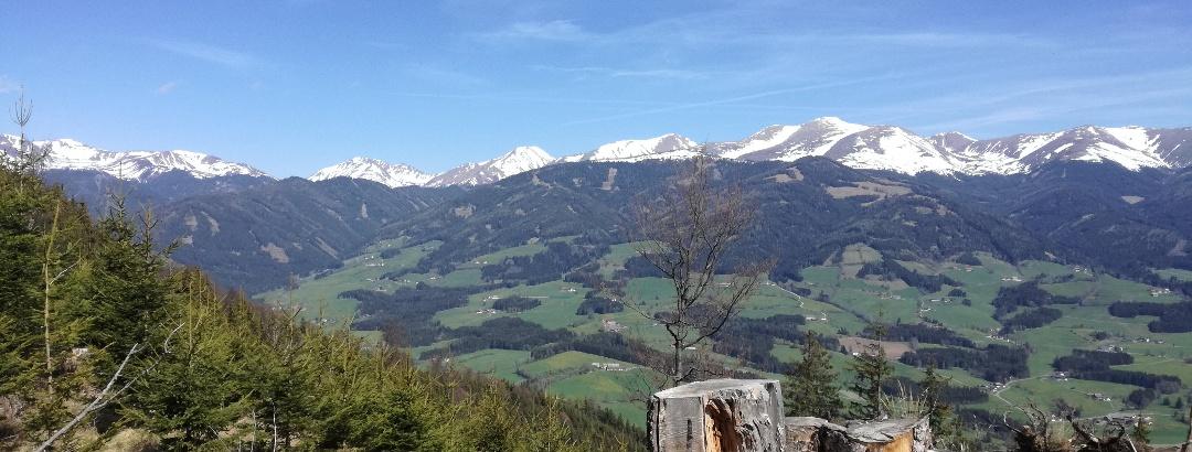 Blick auf die Seckauer Alpen