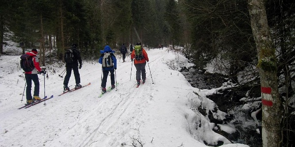 Stuhleck-Kaltenbachgraben: Start in den Kaltenbachgraben