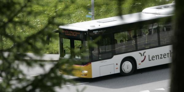 free bus summer