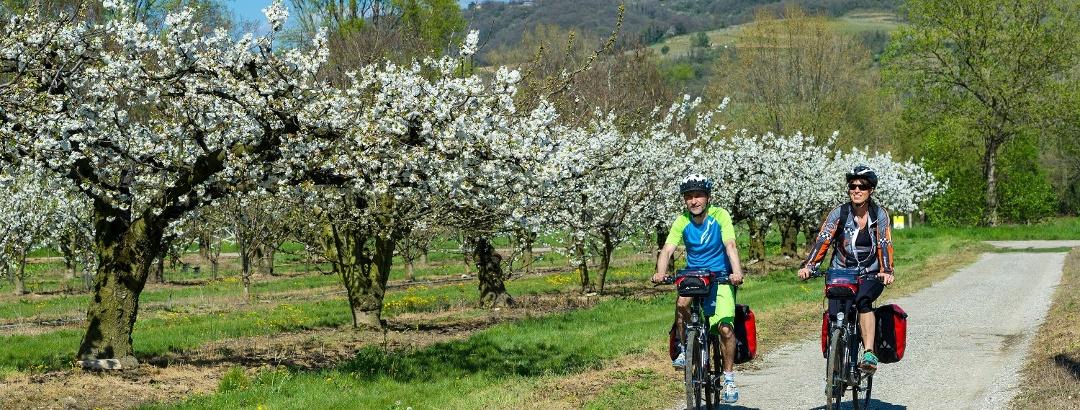 Sur la Viarhôna à vélo