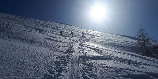 Aufstieg Aignerhöhe