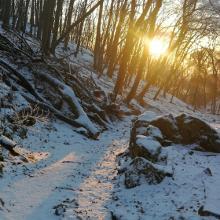 Turul Trail 2