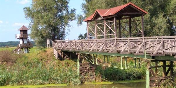 Brücke bei Andau