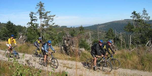 Mountainbiker Richtung Hundsbach unterwegs