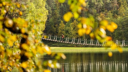 Harrisuvanto hanging bridge during autumn season, Oulanka National Park