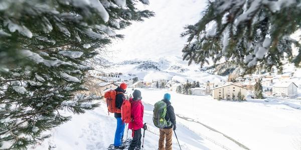 Schneeschuh_Bivio