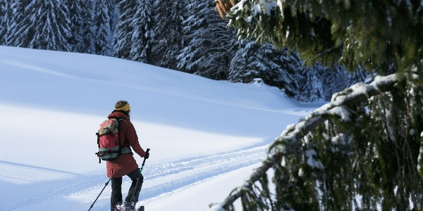 Schneeschuhlaufen in Sörenberg-Flühli