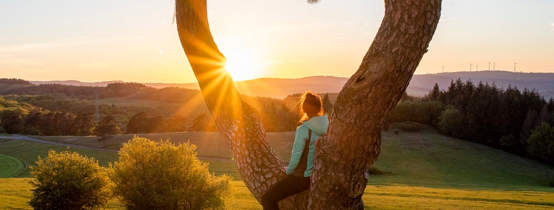 Sonnenuntergang auf dem am Rothaarsteig