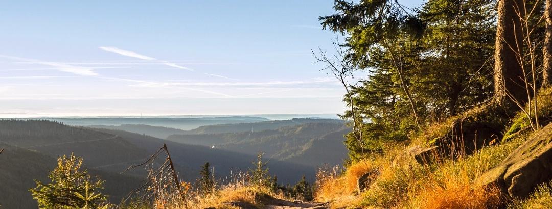Blick von der Schwarzwaldhochstraße