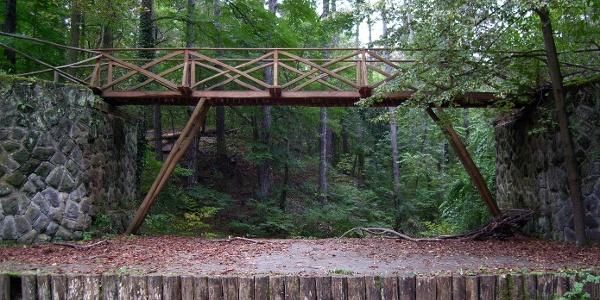 Gödöllői Erdészeti Arborétum