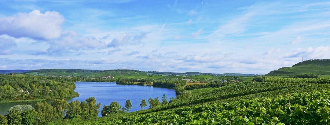 Wein, Land, Fluss: Radparadies Baden-Württemberg