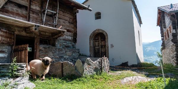Die Kapelle Schutzmantelmadonna, auch Marienkapelle genannt, des Weilers Burgen beim Ferienort Törbel der Moosalpregion