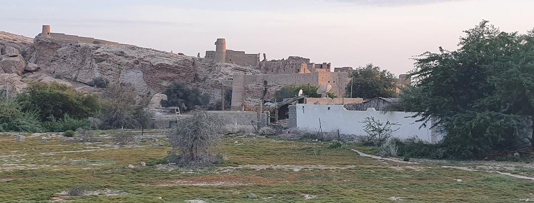 Blick auf die befestigte historische Lehmstadt von Ibri.