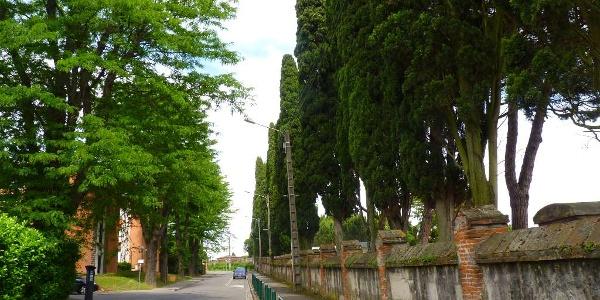 Le long du cimetière Terre-Cabade