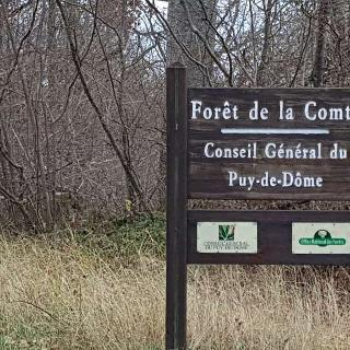Bois de la Comté