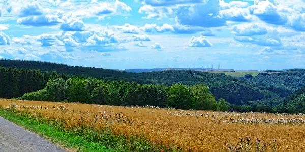 Osburger Panoramaweg im Naturpark Saar-Hunsrück