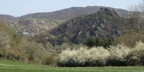 das Ahrtal im Frühling !