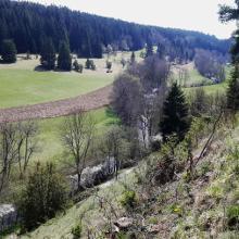 Ausblick vom Weg auf der Wacholderheide
