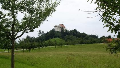 Die Waldburg mit Obstbaumlehrpfad