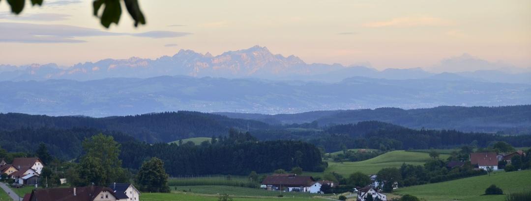 Bodnegger Bergblick