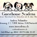 Profilbild von Andrea Schmider