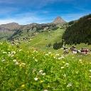 Profilbild von Damüls Faschina Tourismus