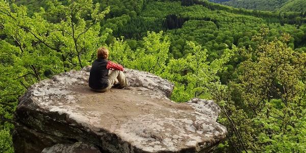 Drachenfels Blick vom Südfels
