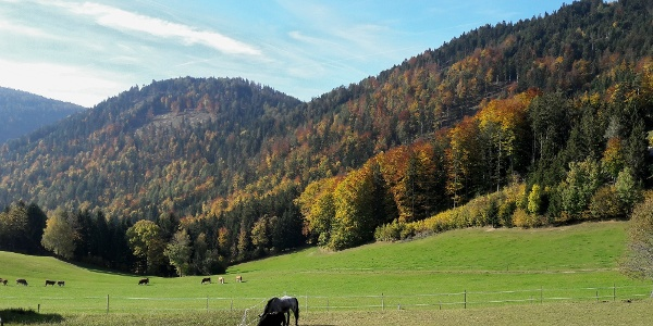 Naaser Höhlenweg (c) Gerlis Wanderungen