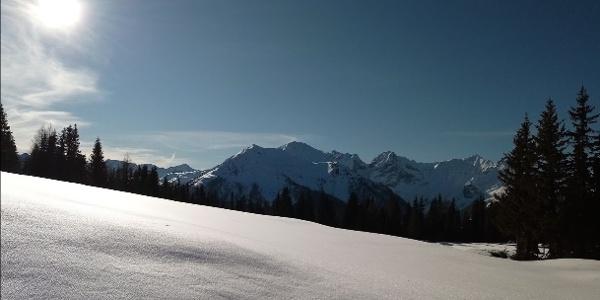Breitwiese unterhalb des Dorfbergs, Blick in die Karnischen Alpen