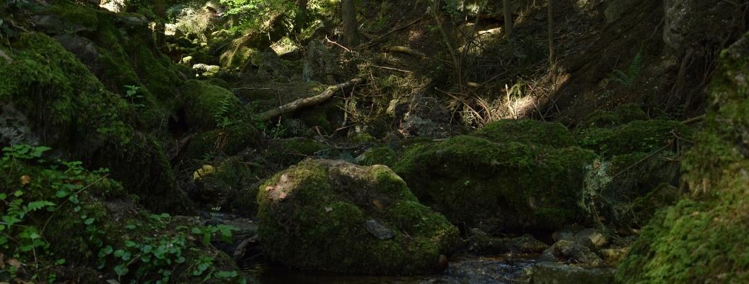 Ameringgraben mit Felsenlabyrinth