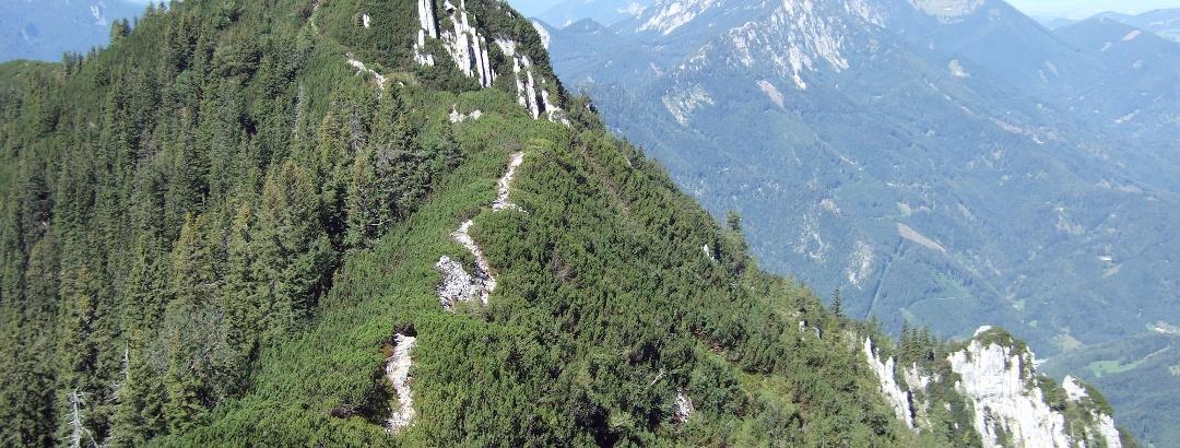 Spering der westlichste Gipfel im Sengsengebirge, Nationalpark Kalkalpen © Stückler