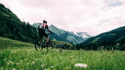 Stallaalm Bikerunde Donnersbachwald