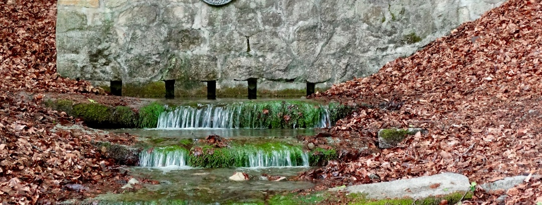 Apenteichquelle in Winzenburg