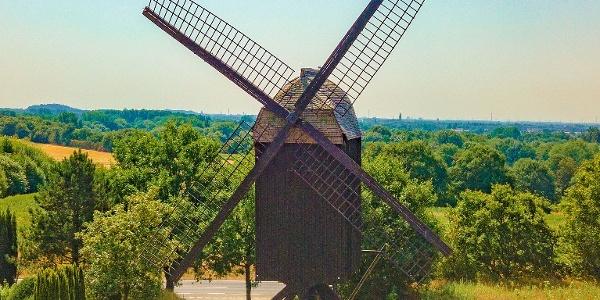 Bockwindmühle in Kempen
