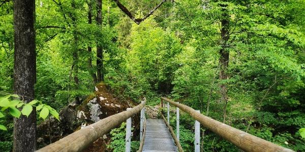 Brücke im Höhlenpark Bezau