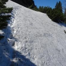 Gefrorene Schneefelder unterhalb des Straußberges am 07.05.20