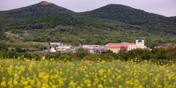 A márianosztrai bazilika és kolostor, a háttérben, balra a Kopasz-hegy