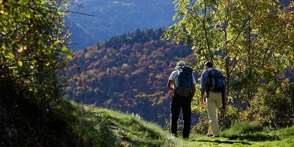 Camino de Canejan a Honeria